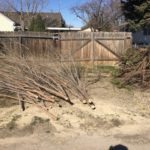 Back Yard Cleanup in Boise